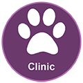 pet behavior clinic